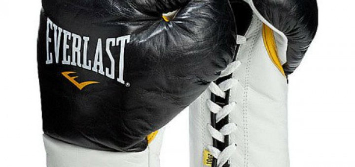 everlast mx boxing gloves