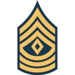 us army 1sg e8 insignia