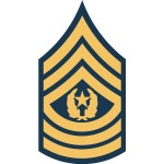 us army csm e9 insignia