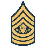 us army sma e9 insignia